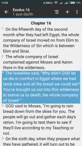 Exodus 16:1-4 (The Message)